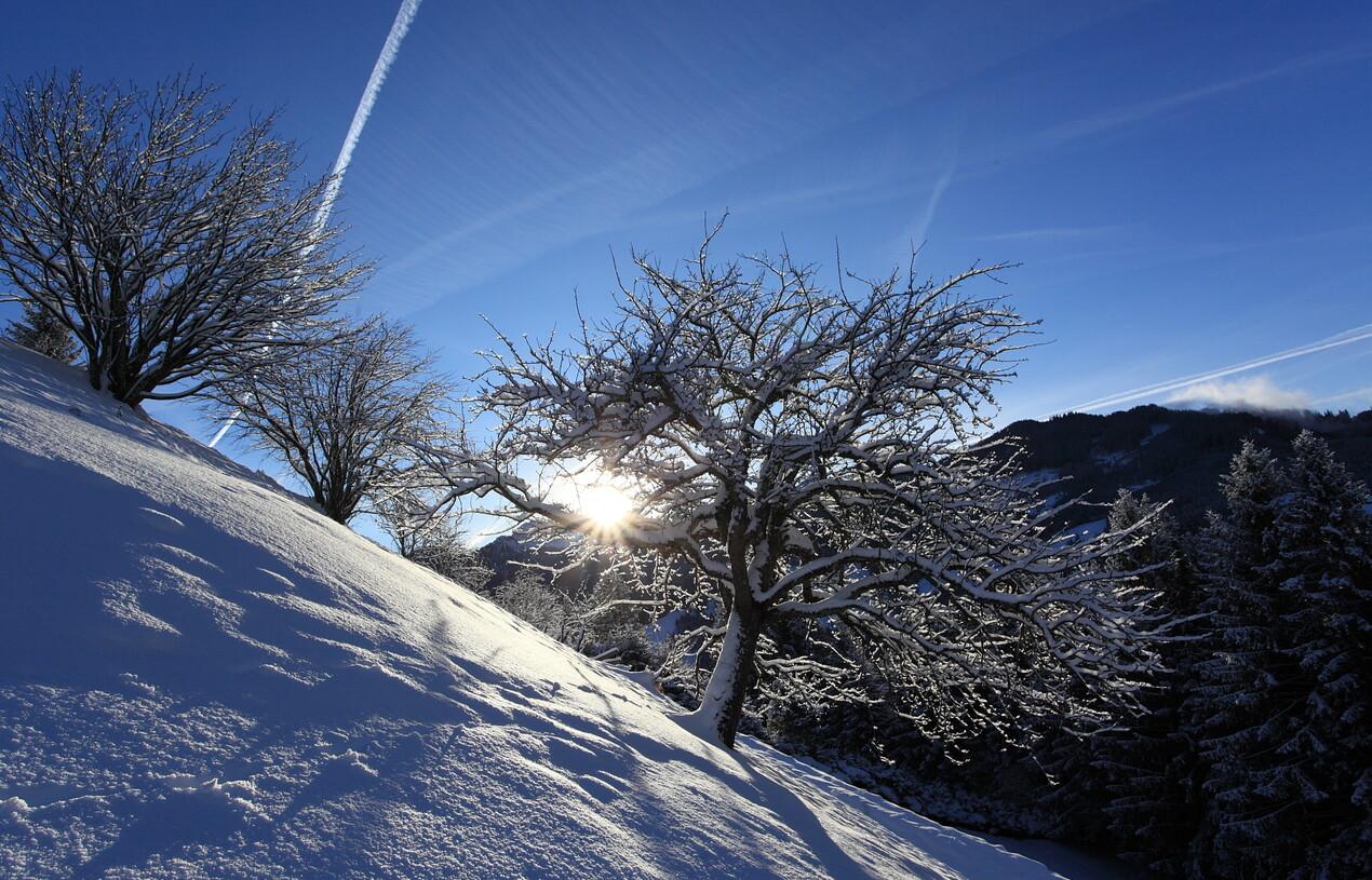 Sonnenaufgang über dem Großarltal im Winter
